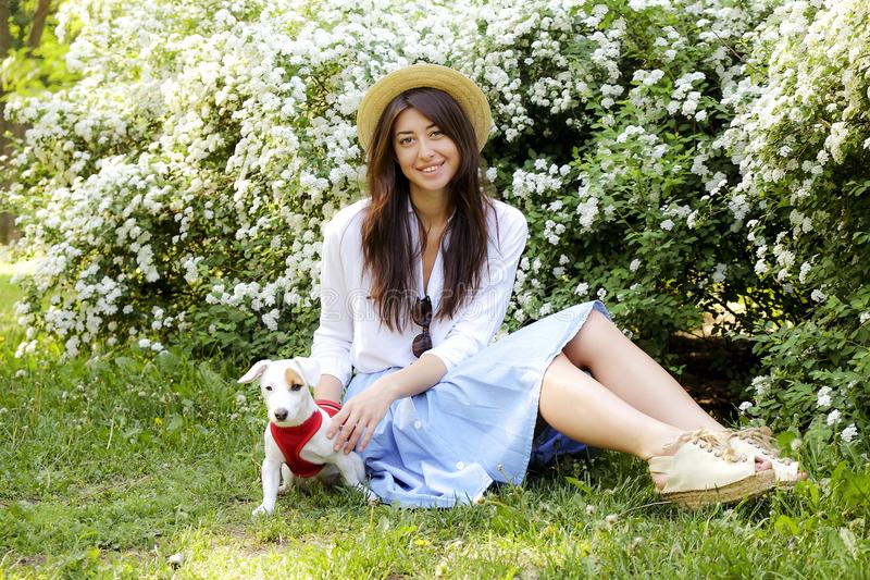 Attractive hipster young woman went for a walk in the park, playing with cute jack russell terrier puppy on clear sunny day. Portrait of attractive brunette stock photography