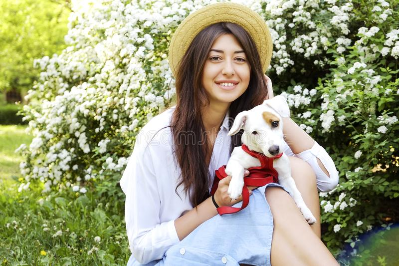 Attractive hipster young woman went for a walk in the park, playing with cute jack russell terrier puppy on clear sunny day. Portrait of attractive brunette stock photo