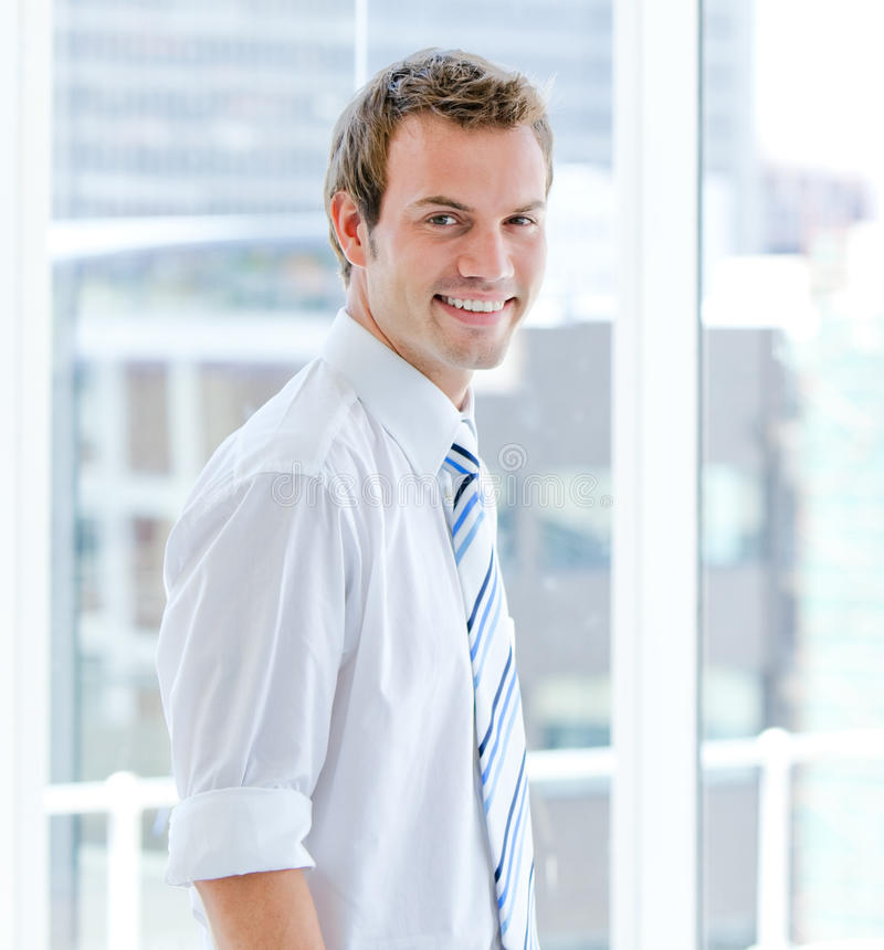 Download Portrait Of An Attractive Businessman Standing Stock Image - Image: 14242725
