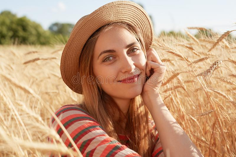 Portrait of attractive sweet young woman sitting around stalks of wheat, having peaceful facial expression, putting her fist to royalty free stock images