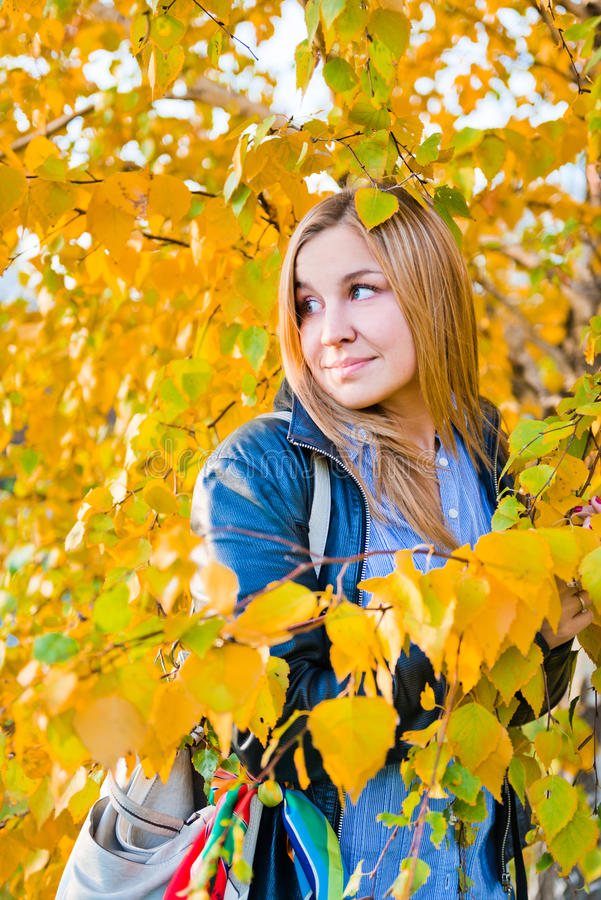 Download Portrait Of Autumn Woman With Yellow Leaves Stock Image - Image: 27269673
