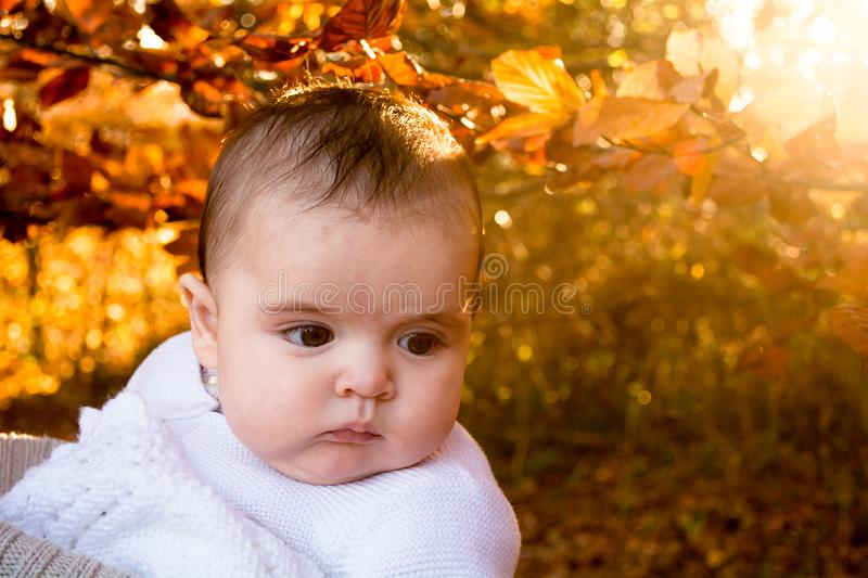 Portrait of a baby with a seasonal autumn background stock photo