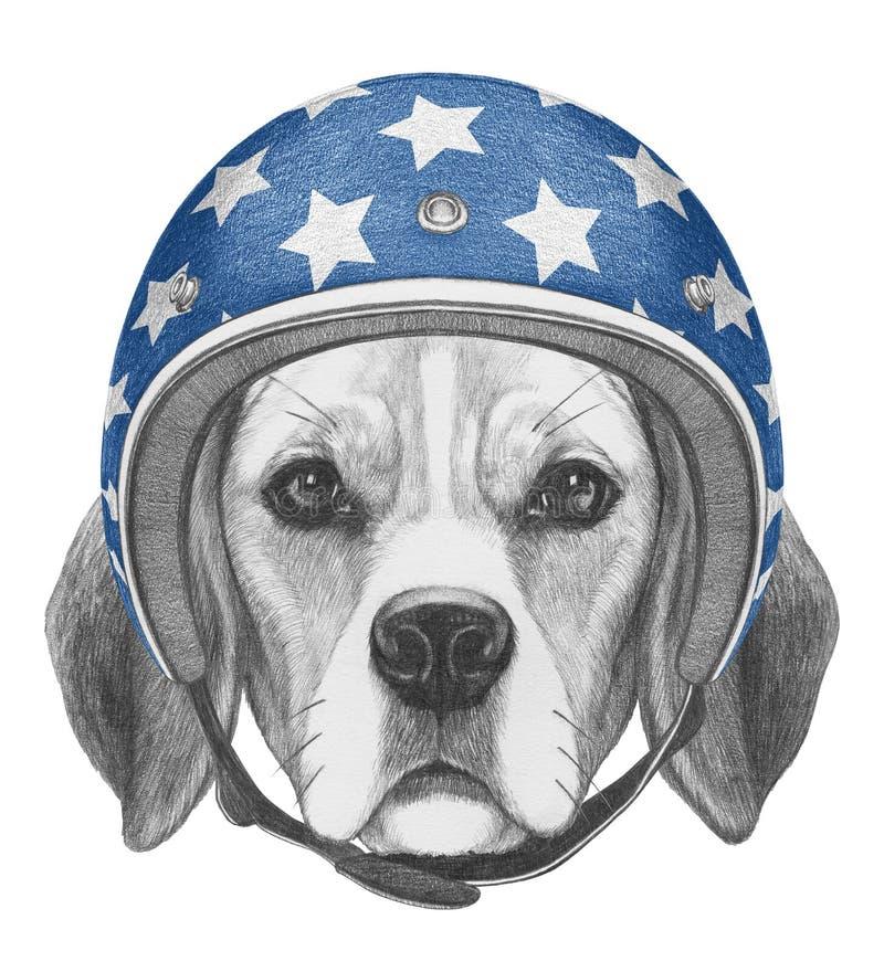 Portrait of Beagle with Helmet. Hand drawn illustration royalty free illustration