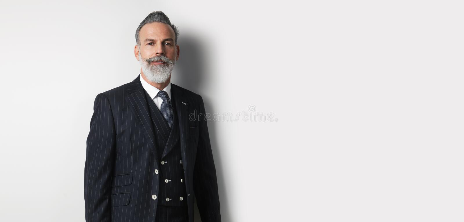 Portrait of bearded handsome businessman wearing trendy suit over empty white background. Copy Paste text space. Wide. royalty free stock images