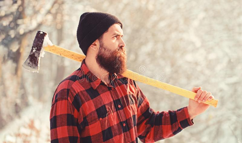 Portrait of a bearded lumberjack. Lumberjack in the woods with an ax. Bearded man in hat with a hatchet. Handsome man royalty free stock photos