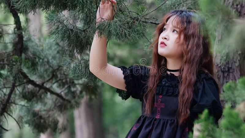 Portrait of beautiful Asian woman posing in summer forest, Chinese girl in vintage black dress looking at trees with blur nature stock image