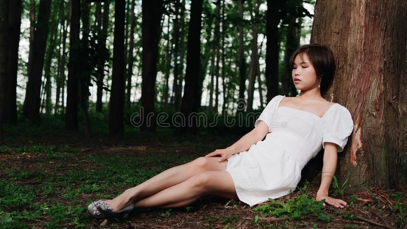 Portrait of beautiful Asian woman sitting under tree in summer forest, Chinese girl in white dress sleeping with eyes closed stock photo