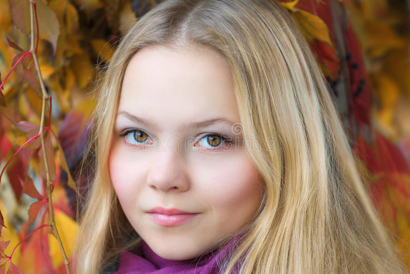 Portrait of a beautiful autumn girl stock photo