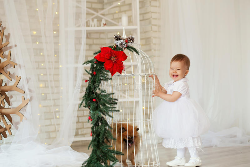 Portrait of a beautiful baby girl playing with a puppy. In the interior with Christmas decorations royalty free stock image