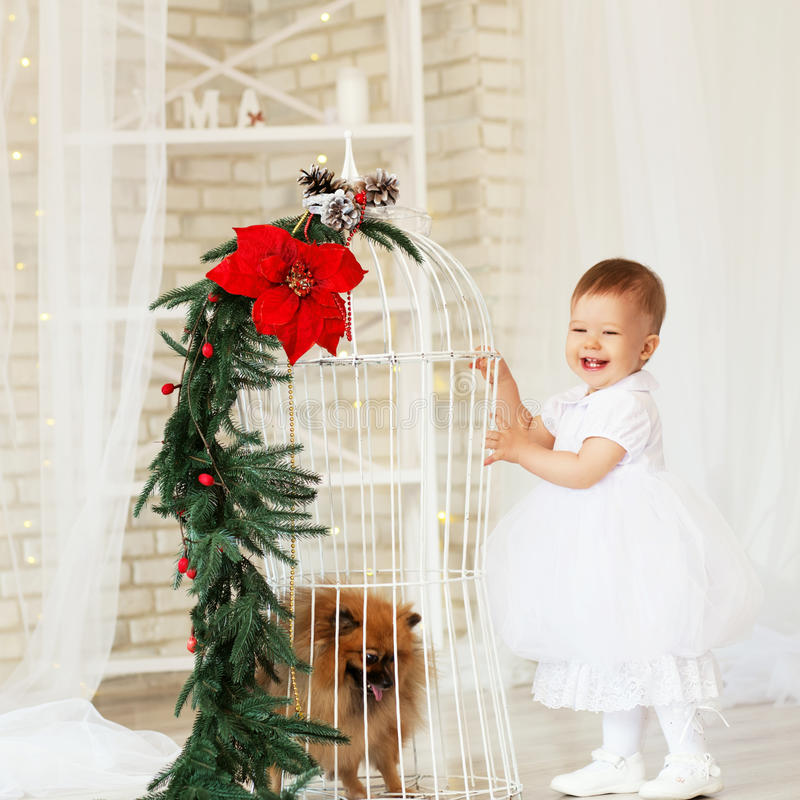 Portrait of a beautiful baby girl playing with a puppy. In the interior with Christmas decorations stock photography