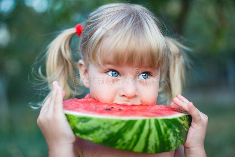 Portrait of beautiful blonde little girl with two ponytails eating watermelon stock images