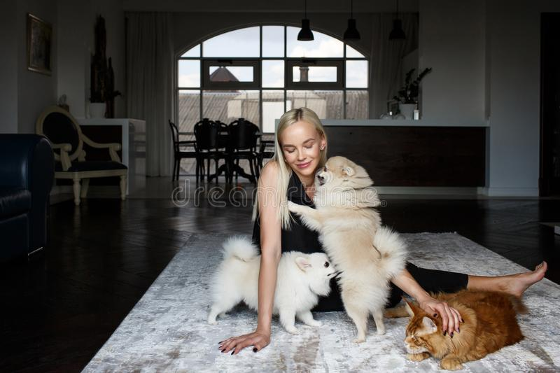 Portrait of a woman in the interior with two dogs and a cat stock photography