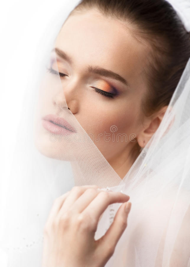 Download Portrait Of A Beautiful Bride Stock Image - Image: 19319041