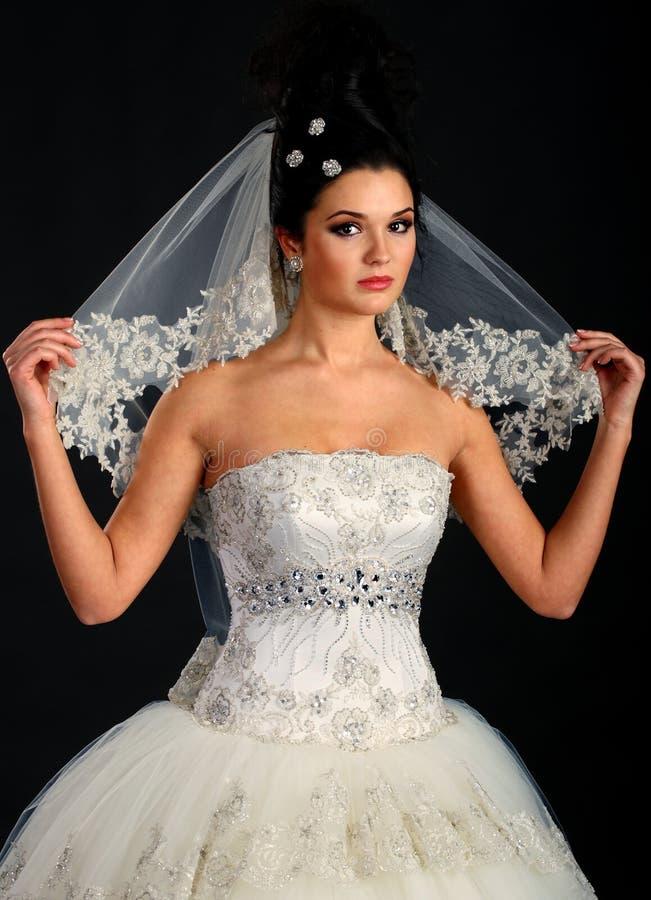 Portrait of the beautiful bride stock image
