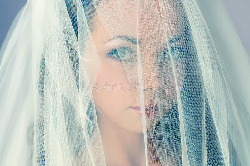 Download Portrait Of A Beautiful Bride Stock Image - Image: 29148781