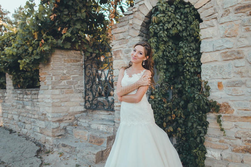 Download Portrait Of Beautiful Bride Stock Photo - Image of young, beautiful: 83721820