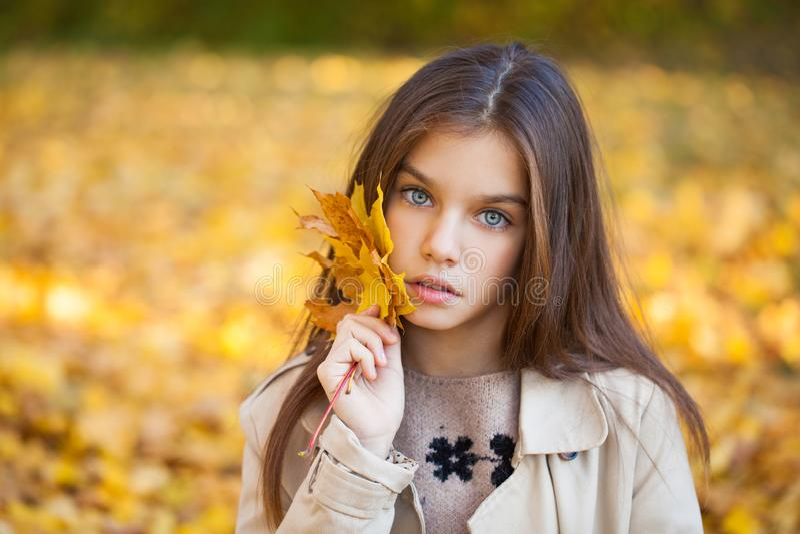 Portrait of a beautiful brunette little girl, autumn park outdoors stock images