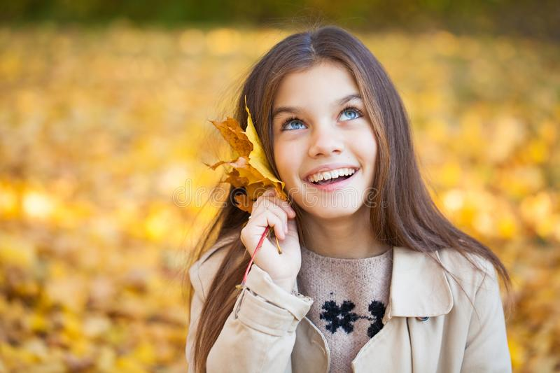 Portrait of a beautiful brunette little girl, autumn park outdoors royalty free stock image