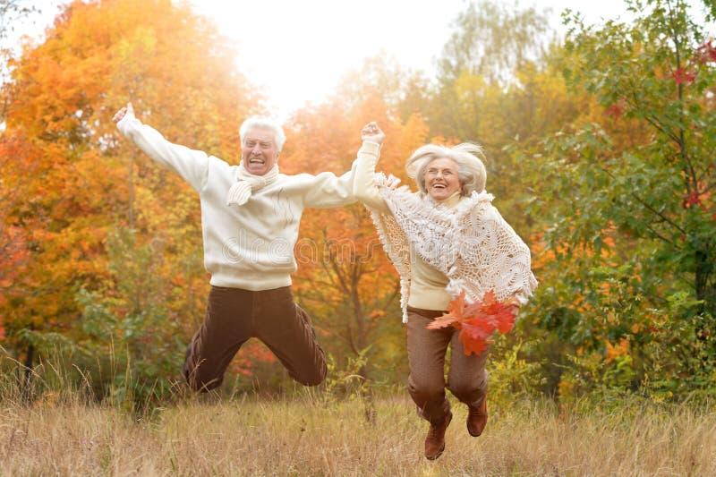 Senior couple having fun in park royalty free stock photo