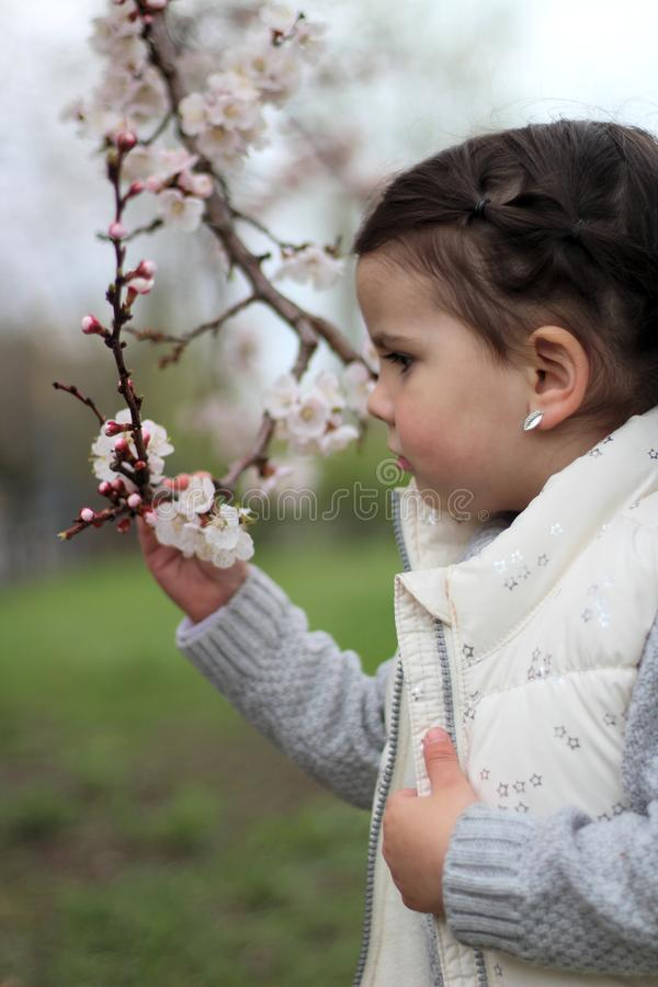 portrait of a beautiful cheerful little girl on a background of a blossoming tree royalty free stock photo