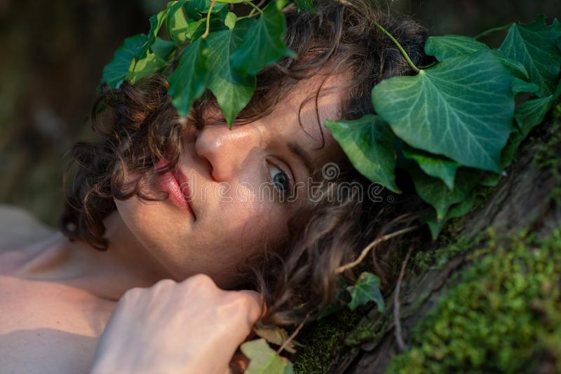 Portrait of a beautiful dark-haired young woman in ivy-crowned old willow tree with fine naked shoulders and deep peace royalty free stock photography