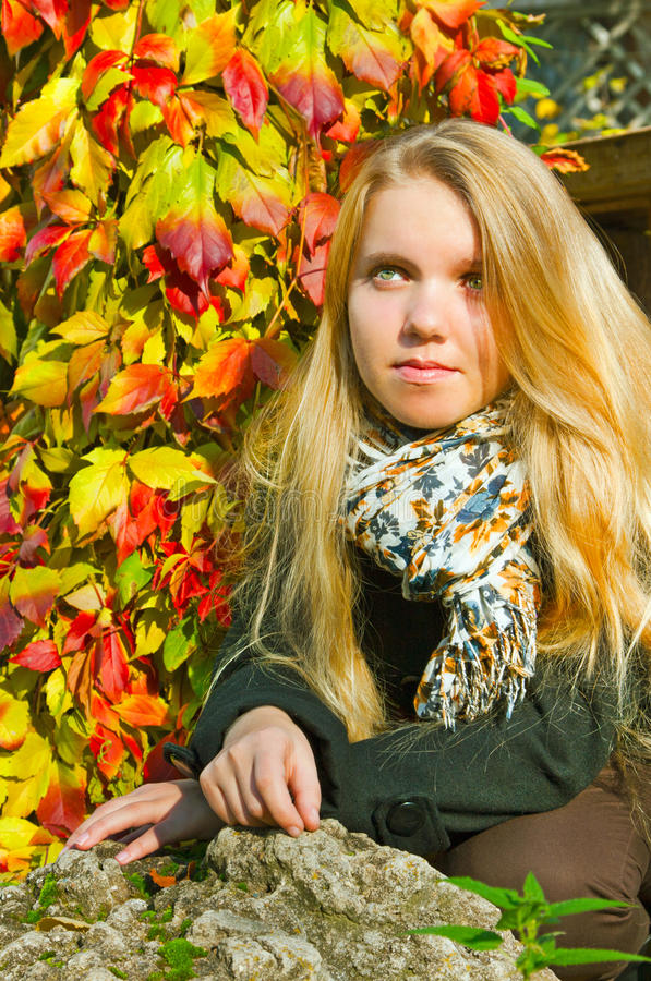 Download Portrait Of The Beautiful Girl, Autumn Royalty Free Stock Image - Image: 25974516