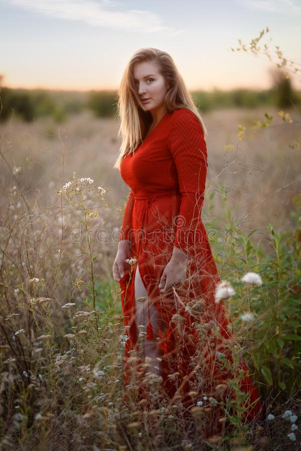 Portrait of beautiful girl in field royalty free stock images