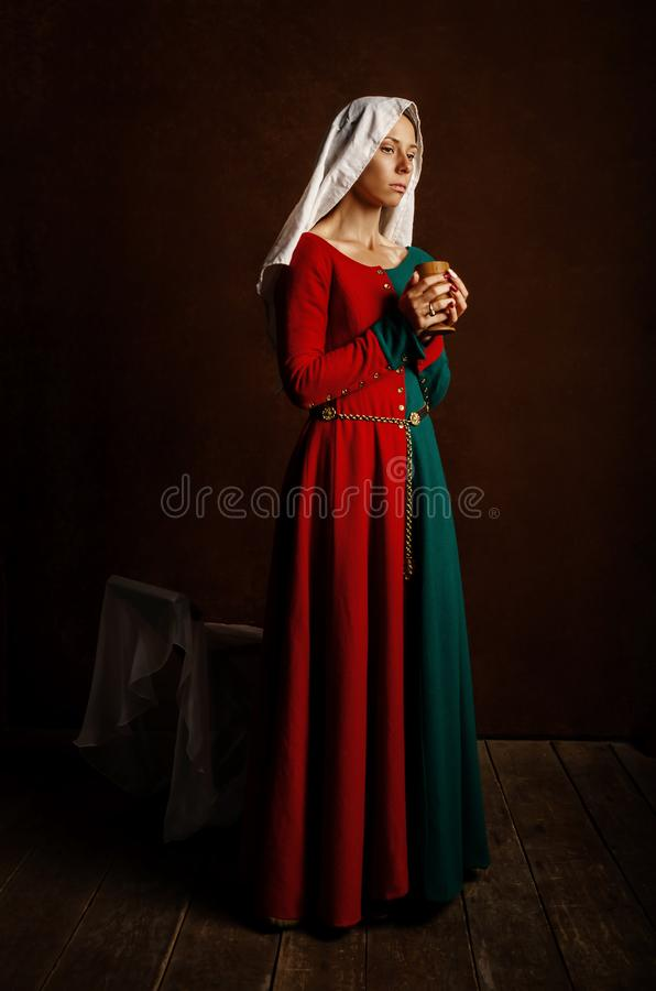 Portrait of a beautiful girl in a medieval dress in red and green on a brown background royalty free stock photo