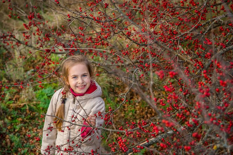 Portrait of a beautiful girl with red berries. Autumn colors of nature. stock images