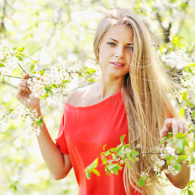 Portrait of a beautiful girl in spring summer park stock images