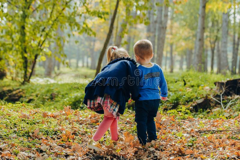 Portrait of beautiful little brother with sister walks in autumn park. walk and play outdoors royalty free stock photo
