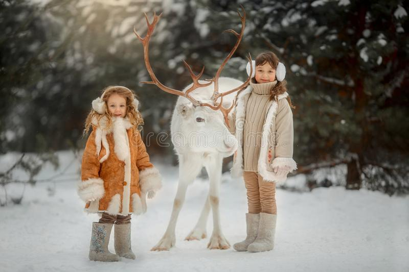 Portrait of beautiful Little girl in fur coat at winter forest stock photos