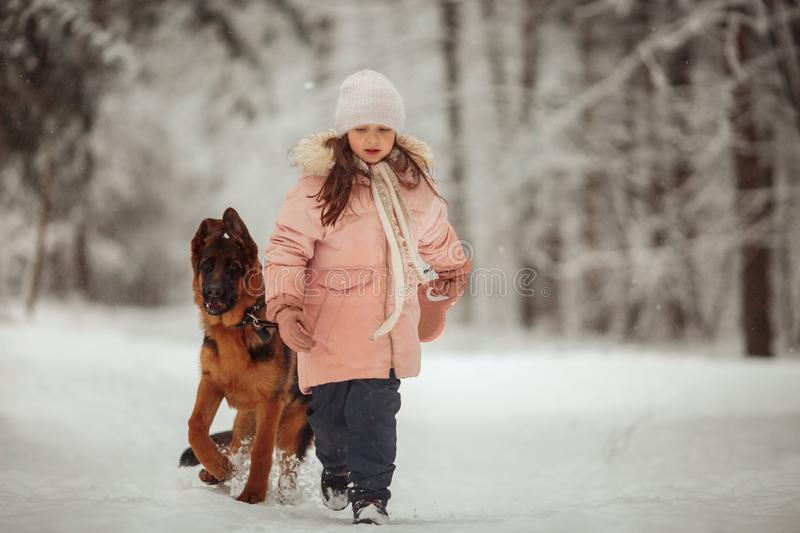 Portrait of beautiful Little girl and puppy at winter forest royalty free stock photos
