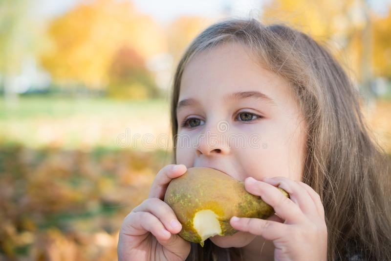 Portrait of a beautiful little girl who eats a pear on a picnic in the autumn park royalty free stock image