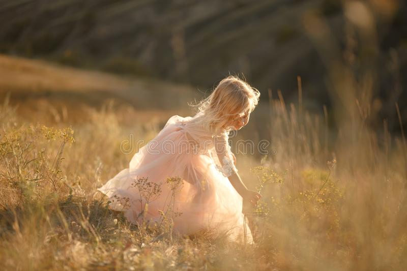 Portrait of a beautiful little princess girl in a pink dress. Posing in a field at sunset stock images