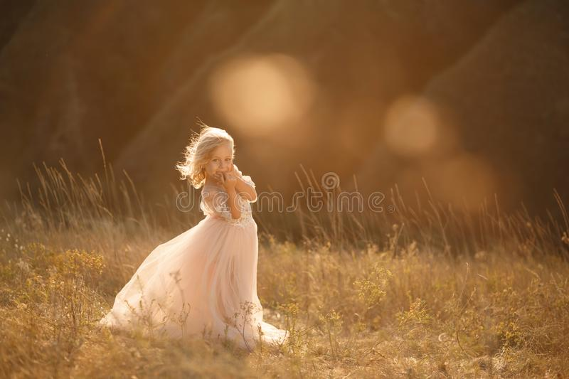 Portrait of a beautiful little princess girl in a pink dress. Posing in a field at sunset.  stock photo