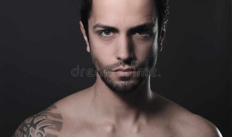 Portrait of a beautiful man royalty free stock photo