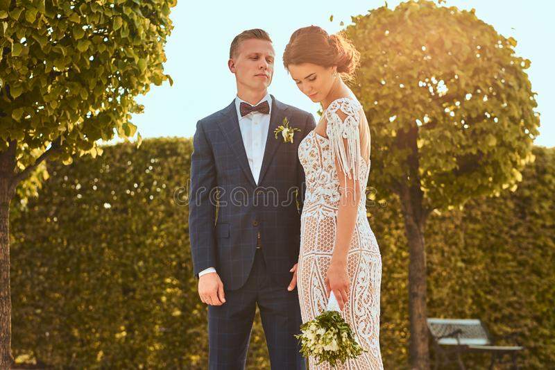Portrait of beautiful newlyweds - charming bride embrace her handsome groom in a park. stock photo
