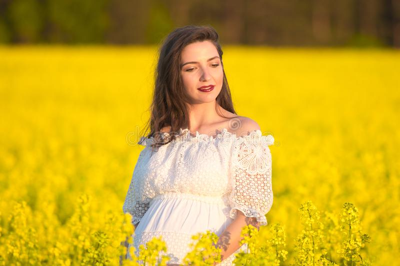 Portrait of a beautiful pregnant girl. Belly of a pregnant woman in a yellow field stock photos