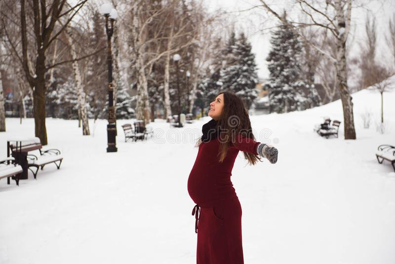 Portrait of beautiful pregnant woman in the winter park. stock photography