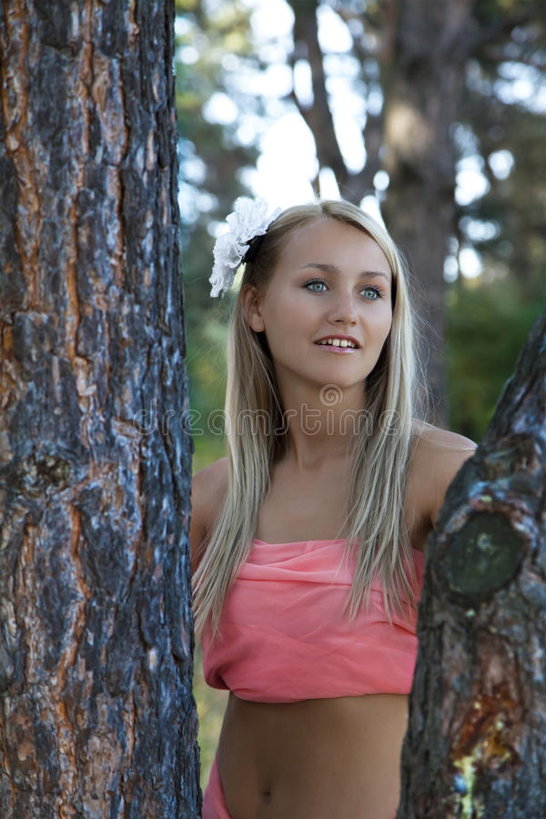Download Portrait Of Beautiful Romantic Woman In  Forest Stock Image - Image: 21057291