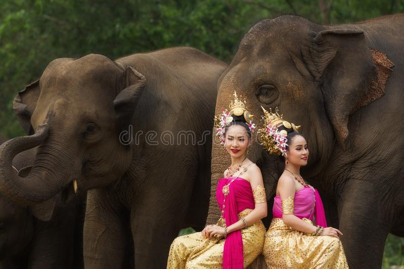 Portrait of Beautiful rural thai woman wear thai dress with elephant in Chiang Mai stock image