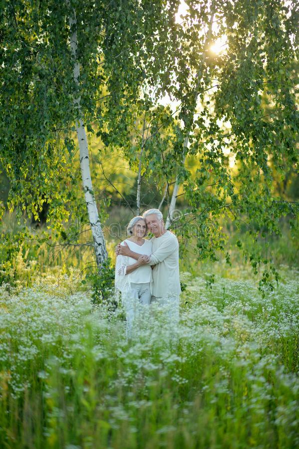 Portrait of beautiful senior couple in the park stock images