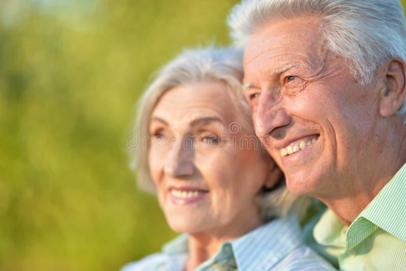 Portrait of beautiful senior couple in the park stock photos