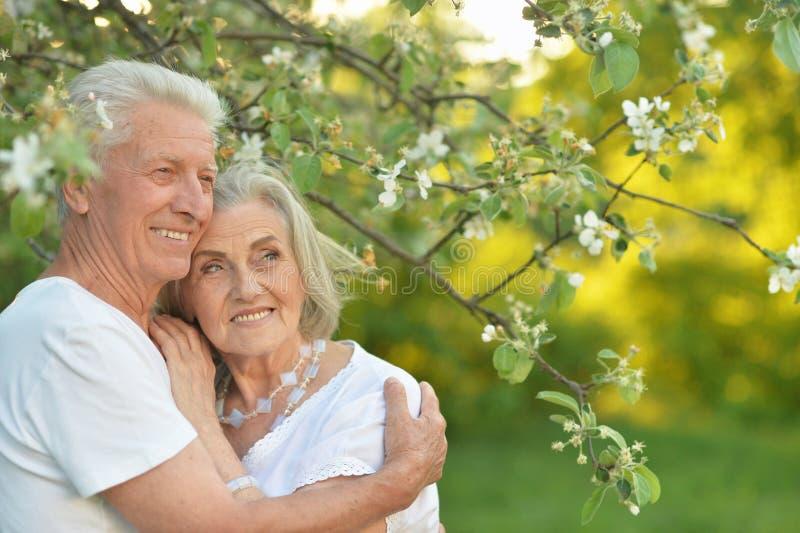Portrait of beautiful senior couple posing in the park stock photo