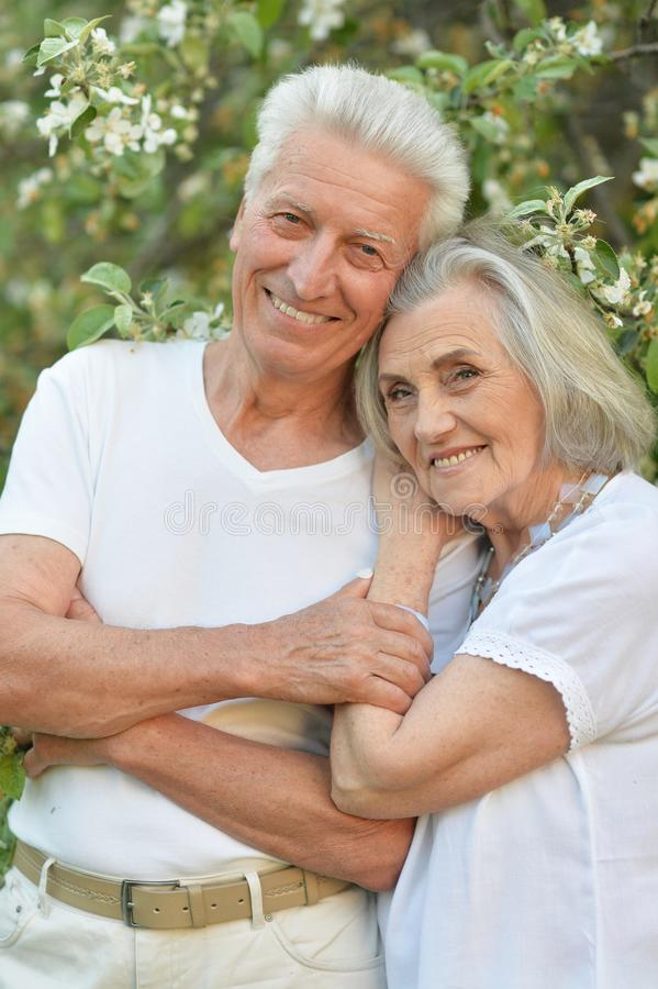 Portrait of beautiful senior couple posing in the park royalty free stock photos