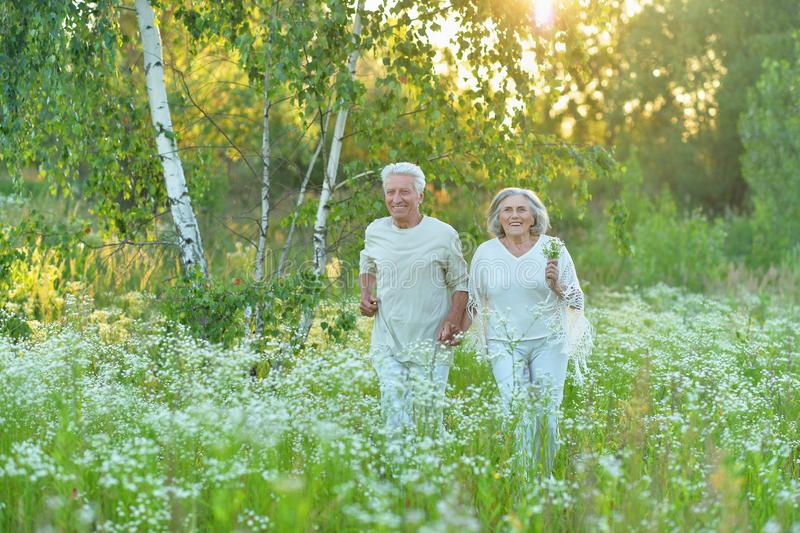Portrait of beautiful senior couple posing in the summer park royalty free stock images