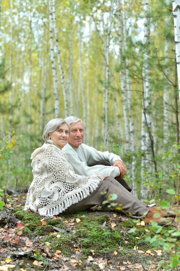 Portrait of beautiful senior couple sitting in autumn park royalty free stock photos