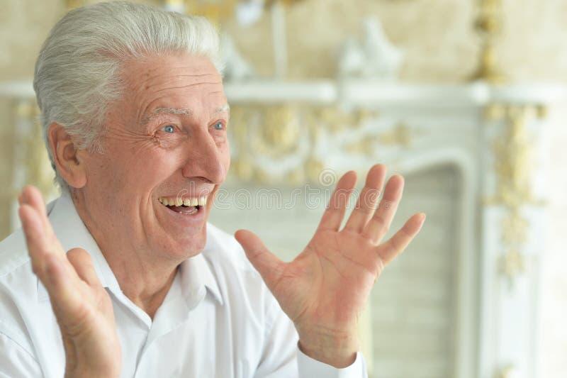 Portrait of beautiful smiling senior man posing stock image