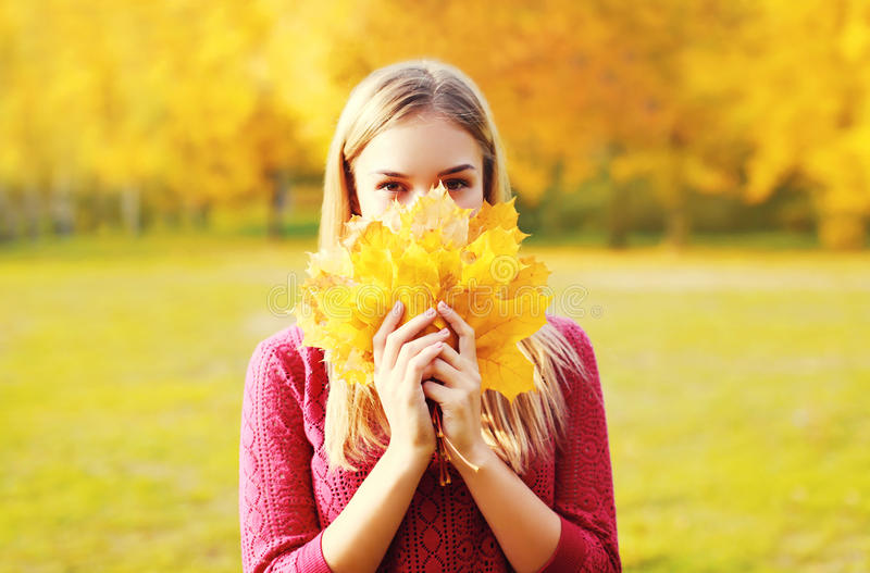Portrait beautiful smiling woman hides her face yellow maple leafs in sunny autumn stock photo